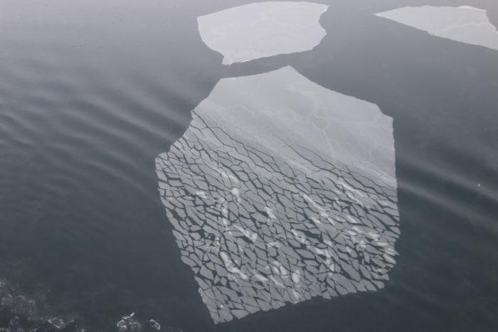 ノルウェー個人旅行、沿岸急行船・Hutigrutenフッティルーテン・キルケネス